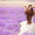 Organización de bodas asesoramiento y trámites, Privilenza Madrid